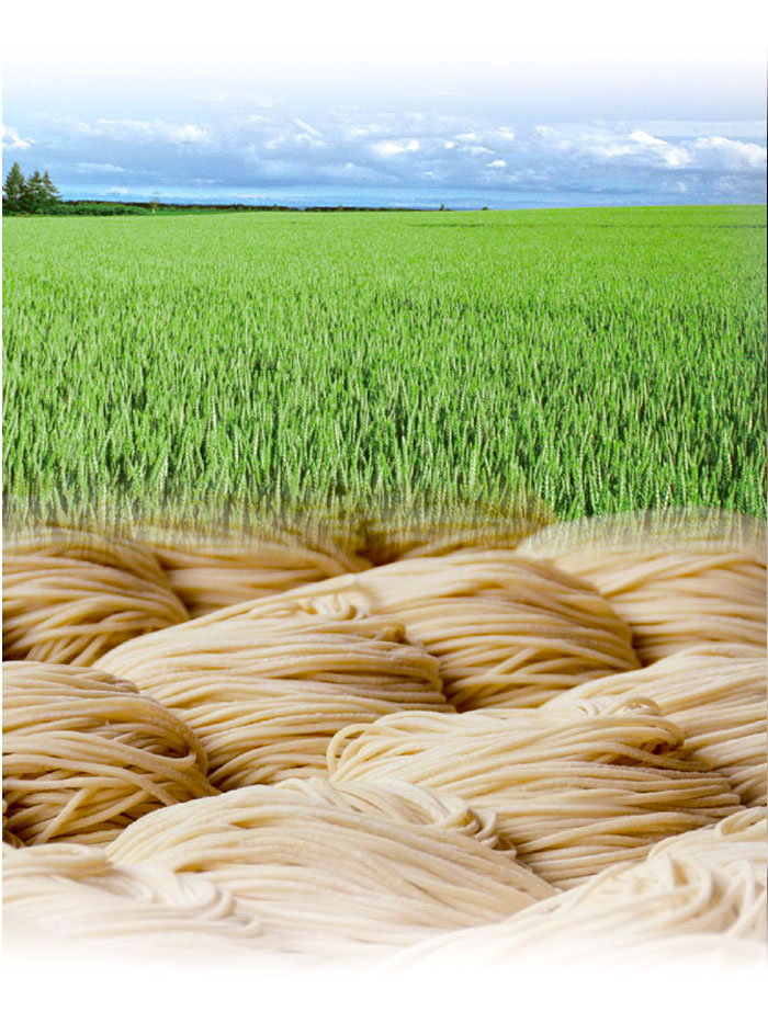 Menya Ultra Organic Wheat